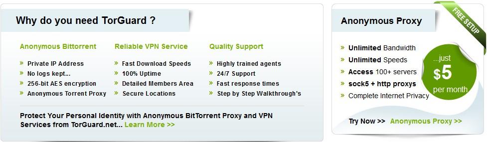 Tor Guard VPN Review